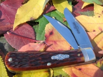 GEC #748212SAB Autumn Gold Bone (aa)